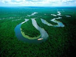 Iquitos selva.jpg
